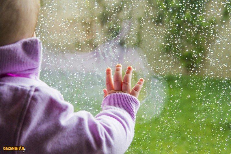 YağmurDadalası.jpg